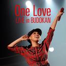 One Love (2012.06.22 @ NIPPON BUDOKAN)/AI