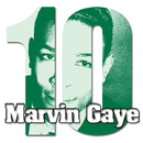 10 Series:  Marvin Gaye/MARVIN GAYE