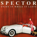 Enjoy It While It Lasts (Japanese Edition)/Spector