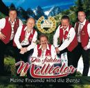 Meine Freunde sind die Berge/Die Fidelen Mölltaler