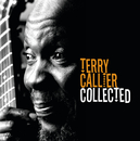 The Collected/Terry Callier