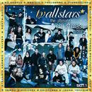 The Ultimate Christmas Album/TV Allstars