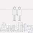 Audity/Stereo Fabrication of Youth