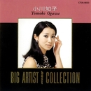 BIG ARTIST BEST COLLECTION/小川知子/小川知子