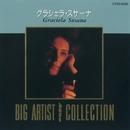 BIG ARTIST Best COLLECTION グラシェラ・スサーナ/グラシェラ・スサーナ