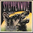 ワイルドで行こう/ステッペンウルフ/Steppenwolf