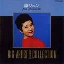 BIG ARTIST BEST COLLECTION/黛ジュン/Jun Mayuzumi