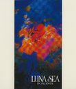 IN SILENCE/LUNA SEA