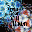 From Noon Till Dawn/ストレイテナー