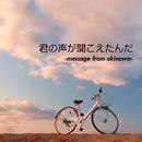 君の声が聞こえたんだ  -message from okinawa-/しおり