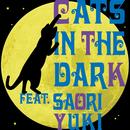 夜明けのキャッツ/Cat in the dark