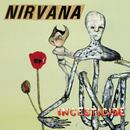 Incesticide/Nirvana