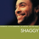 Essential/Shaggy
