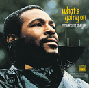 What's Going On/Marvin Gaye & Kygo