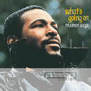 What's Going On/Marvin Gaye & SNBRN