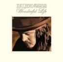 Wonderful Life (4-Tracks Maxi Single)/Zucchero