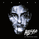 Years (feat. Matthew Koma)/Alesso