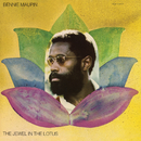 The Jewel In The Lotus/Bennie Maupin