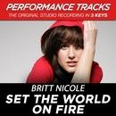 Set the World On Fire (Performance Tracks) - EP/Britt Nicole