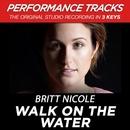 Walk On The Water (Performance Tracks)/Britt Nicole