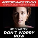 Don't Worry Now (Performance Tracks) - EP/Britt Nicole