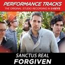 Forgiven (Performance Tracks) - EP/Sanctus Real