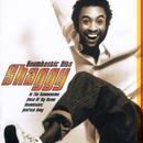 Boombastic Hits/Shaggy