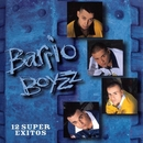 12 Super Exitos/Barrio Boyz