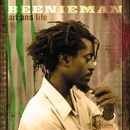 Art And Life/Beenie Man