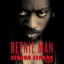 Hmm Hmm (Remix)/Beenie Man