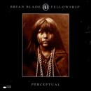 Perceptual/Brian Blade