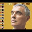 Look Into The Eyeball/David Byrne