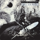 Secrets Of The Beehive/David Sylvian