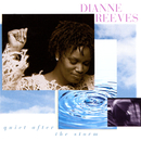 Quiet After The Storm/Dianne Reeves