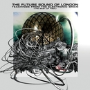 Teachings From The Electronic Brain/Future Sound Of London