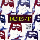 Gotta Lotta Love/Ice t