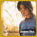 Let It Come Down/James Iha