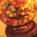 LIVE CHAMELEON/Radio Club