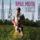 A World Within A World/Raul Midon