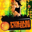 Punjabi In The Club/Ricky Kej