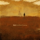 Secondhand Dreaming/Ruth