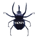 Saosin/Saosin