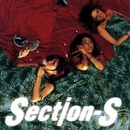 WWW./Section-S