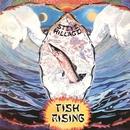 Fish Rising/Steve Hillage
