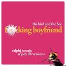 Ralphi Rosario N' Jody Db Versions/The Bird And The Bee