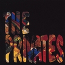 GREATEST HITS VOLUME 1 1987-1993/THE PRIVATES