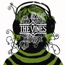 Don't Listen To The Radio/The Vines