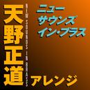 ニュー・サウンズ・イン・ブラス 天野正道アレンジ/東京佼成ウィンドオーケストラ