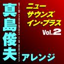 ニュー・サウンズ・イン・ブラス 真島俊夫アレンジ Vol.2/東京佼成ウィンドオーケストラ