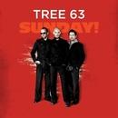Sunday/Tree63